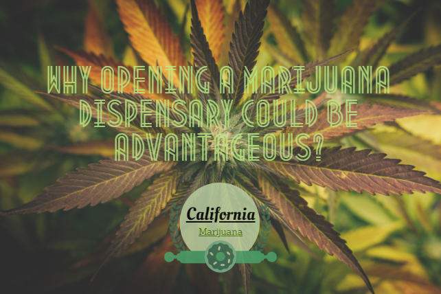 Why opening a marijuana dispensary could be advantageous?